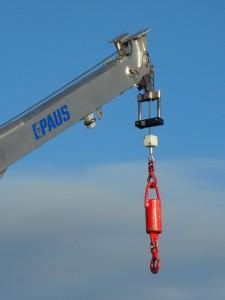 crane-180102_640